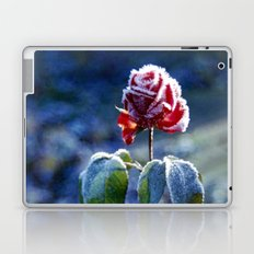 Frosted Rose Laptop & iPad Skin