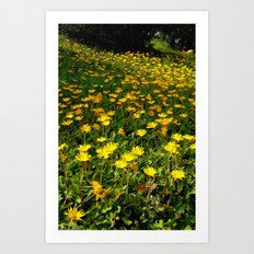 Flowers on the Hill Art Print