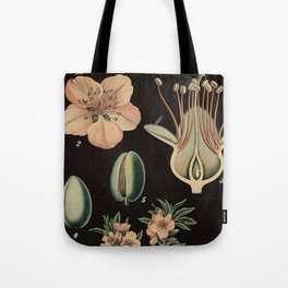 Botanical Almond Tote Bag