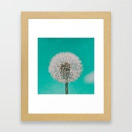 Green Blue Dandelion Framed Art Print
