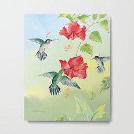 Colorful Hummingbirds and Hibiscus  Metal Print