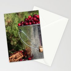 Berries and Spice Stationery Cards