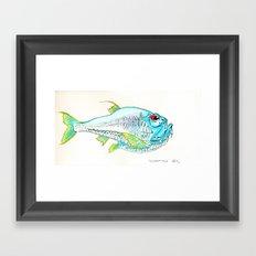 Hatchet Fish Framed Art Print