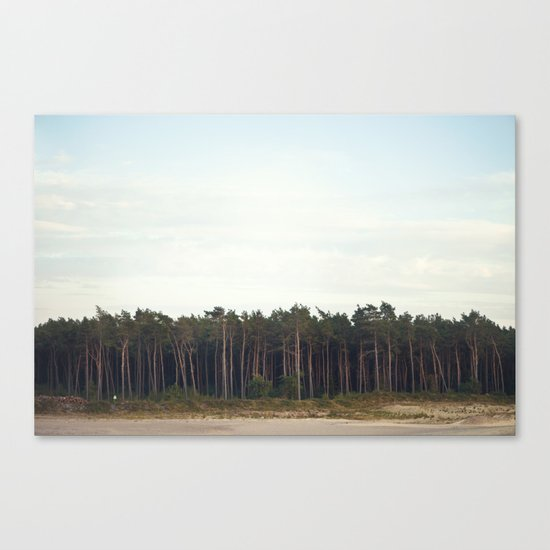 _______  Canvas Print