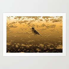 Bird on the Beach Art Print