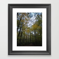 Out in the Woods Framed Art Print