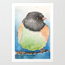 Dark-eyed junco watercolor Art Print