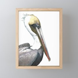 Pelican Portrait Framed Mini Art Print
