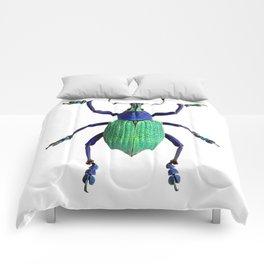 Eupholus Weevil Beetle Comforters