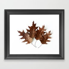 Autumnal Love Framed Art Print