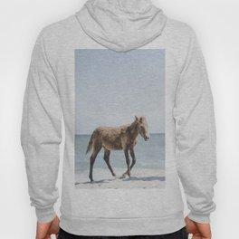 Horse Horse beach Hoody