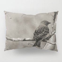 The Quest:  Black and White Bird Antiqued Pillow Sham