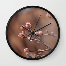 New Life -  Fresh Spring Buds after rain, Rose and earth tones, Nature Photography Macro Wall Clock