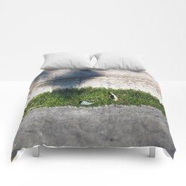 Longwood Gardens - Spring Series 98 Comforters