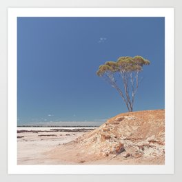 Lake Grace 3 Art Print