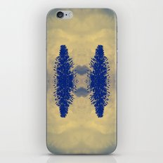 Flying Above The Clouds iPhone & iPod Skin