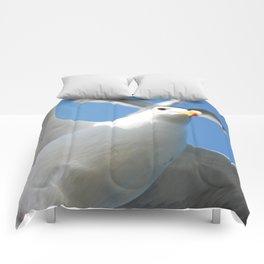 Flight buddies! Comforters