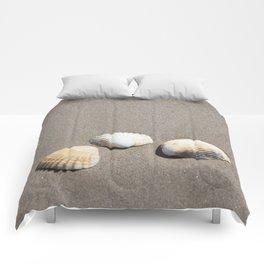Three Seashells Comforters