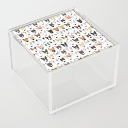 All The Bullies Acrylic Box