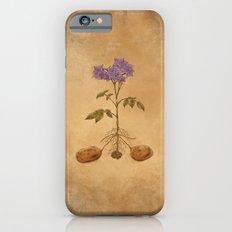 Anatomy of a Potato Plant Slim Case iPhone 6s