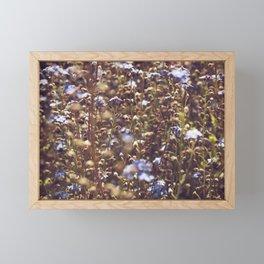 Forget Me Not Framed Mini Art Print