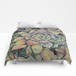 Chicks and Hens Comforters