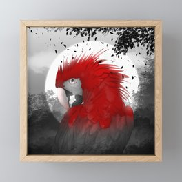 Scarlet Macaw Framed Mini Art Print