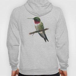 Ruby Throated Hummingbird Hoody