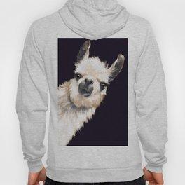 Sneaky Llama in Black Hoody