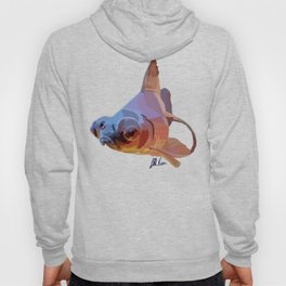 Grumpy Goldfish in Blue and Gold Hoody