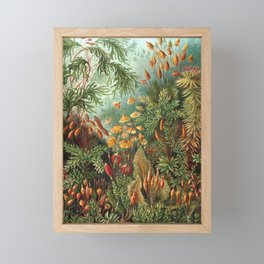 Vintage Plants Decorative Nature Framed Mini Art Print
