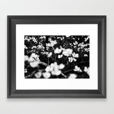 Surrounded by Dreams B&W Framed Art Print