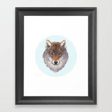 Grey wolf portrait Framed Art Print