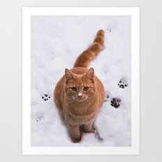 Ginger Kitty Discovers Snow! Art Print