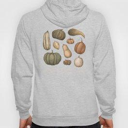 Pumpkins and Gourds Hoody