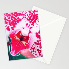 Close up Orchid 28 Stationery Cards