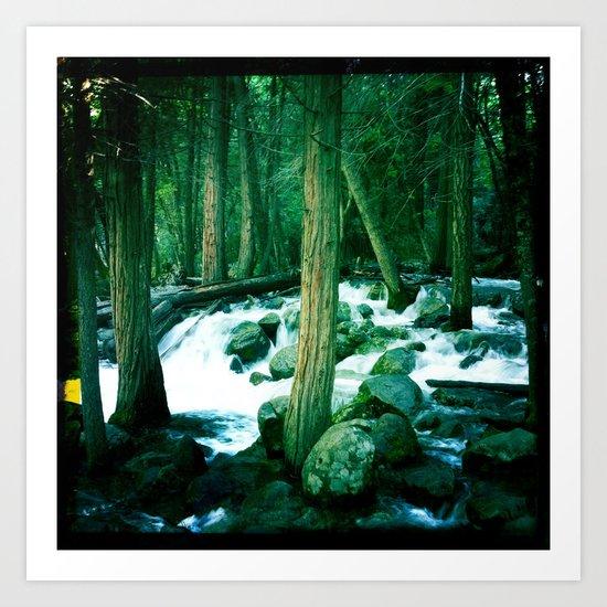 Yosemite Trees Art Print
