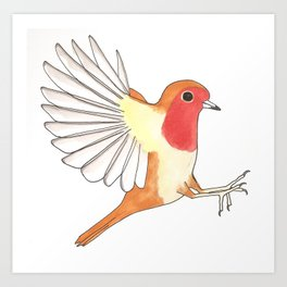 Robin In Flight Art Print
