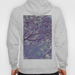 forest 2 #forest #tree Hoody