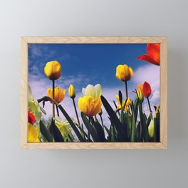 Relax With The Tulips Framed Mini Art Print