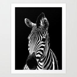 Zebra Black Art Print