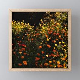 Beautiful garden flowers Framed Mini Art Print