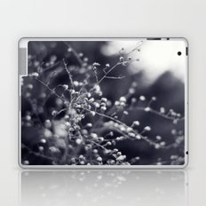 Winter Aster in Black and White Laptop & iPad Skin