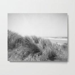 UNHINGED - ADOX Silvermax 100 - 35mm film Metal Print