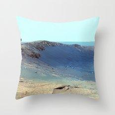 Cosmos & Indians Throw Pillow