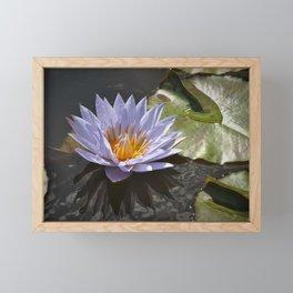 Lily Framed Mini Art Print