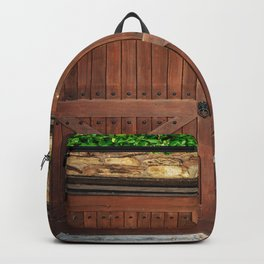 Door and Ivy Backdrop Backpack