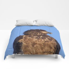 Golden Eagle on the Kenai Comforters