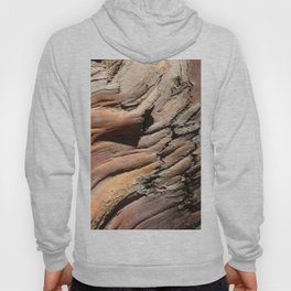Eucalyptus tree bark texture Hoody