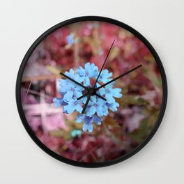 Blue Flowers, Red Thorns ~ Cedars of Lebanon, Tennessee Wall Clock